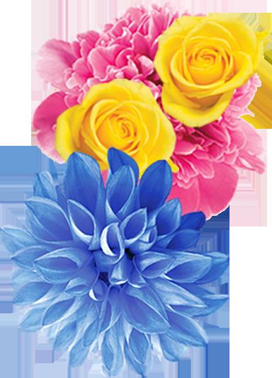 Form Flower Left